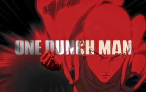 One, Punch Man