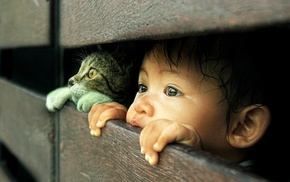children, cat