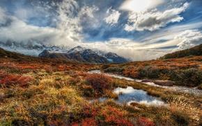 fall, shrubs, nature, mountain, Argentina, snowy peak