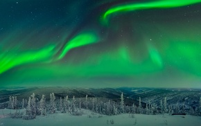 landscape, aurorae, trees, snow