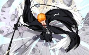Kurosaki Ichigo, Bleach, anime, manga