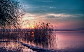 lake, trees, grass, sun rays, Sun