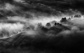 nature, sunrise, trees, aerial view, mist, field