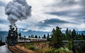 train, trees