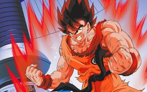 Son Goku, Dragon Ball Z, Dragon Ball