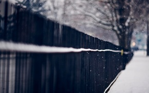 trees, fence, urban, snow