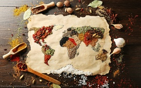 food, world map, spices