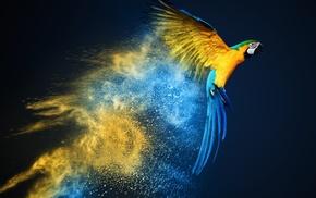 parrot, blue, yellow, photo manipulation, smoke