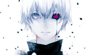anime boys, Kaneki Ken, Tokyo Ghoul, white hair