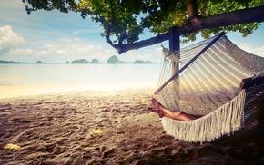 beach, hammocks, landscape, trees