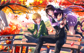 fall, Yato Noragami, anime, leaves, long hair, Yukine Noragami
