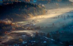 mist, landscape