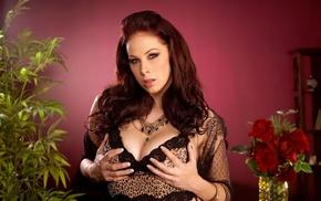 brunette, pornstar, big boobs, natural boobs, Gianna Michaels