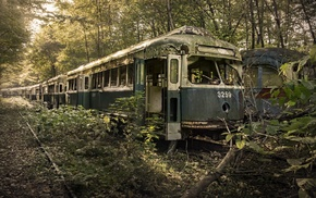 branch, nature, rail yard, trees, broken, tram