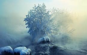 snow, winter, nature, ice, landscape