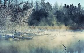 ice, nature, snow, winter, landscape