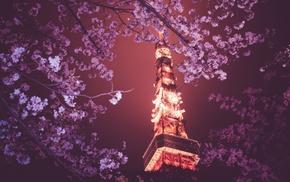night, flowers, Tokyo Tower, Japan, Tokyo