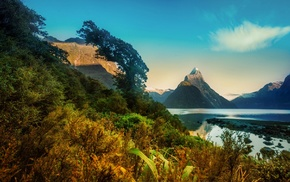 mountain, New Zealand, landscape, morning, Milford Sound, fjord