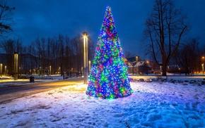 snow, nature, holiday, Christmas, christmas lights, fir