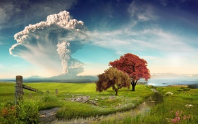 landscape, eruption, Calbuco Volcano, Chile, nature, wildflowers