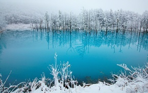 landscape, nature, snow, lake, winter, ice