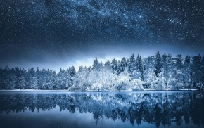 fall, Milky Way, reflection, nature, forest, trees