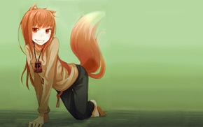 Spice and Wolf, Holo