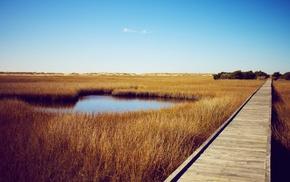pond, nature, bridge