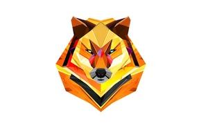wolf, simple background, artwork, Justin Maller, geometry