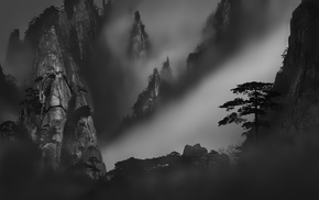 mountain, mist, landscape, trees, monochrome, dark