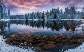 forest, water, snow, nature, lake, reflection