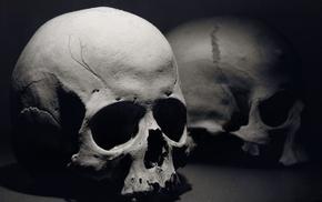 skull, bones