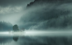 morning, nature, lake, trees, landscape, mist