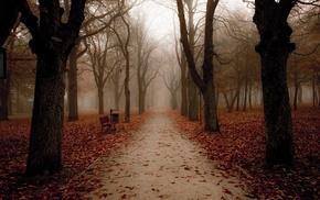 park, landscape