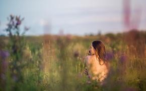 girl, field