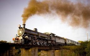 nature, train