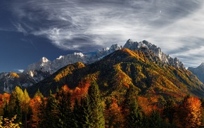 trees, fall, nature, snowy peak, clouds, Slovenia