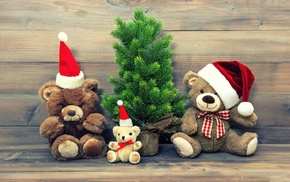 teddy bears, fir, Christmas
