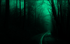 road, forest, spooky, dark, nature, trees
