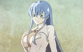 Esdeath, Akame ga Kill, anime, open shirt, anime girls, cleavage