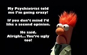 humor, The Muppets, quote