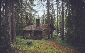 wood, cozy, forest, pine trees, house, cottage