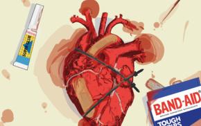 hearts, anatomy