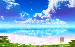 beach, brightness, Eden, nature