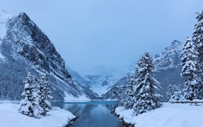 landscape, winter, trees