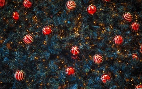 nature, photography, Christmas Tree, trees, texture, lights