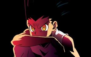 Gon Freecs, Hunter x Hunter, anime