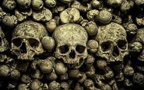bones, skull