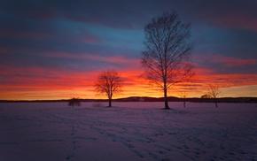 snow, landscape