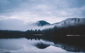 lake, nature, forest, mist